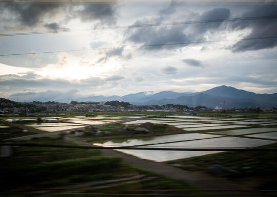 Speeding past rice paddies in the train