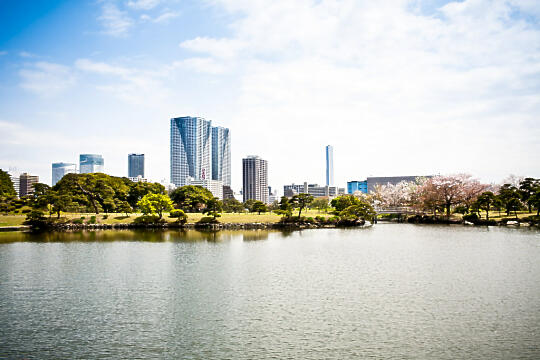 View from Hamarikyu Gardens