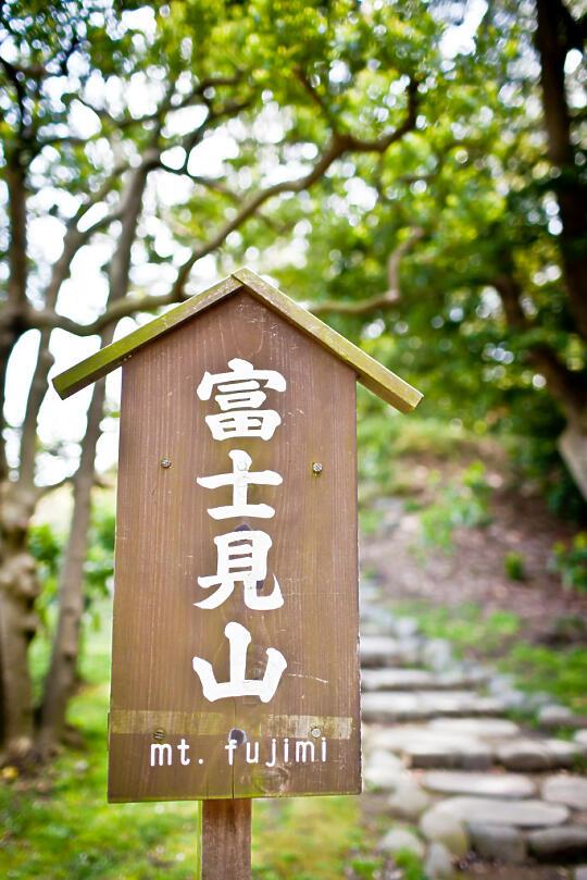 Mt. Fujimi