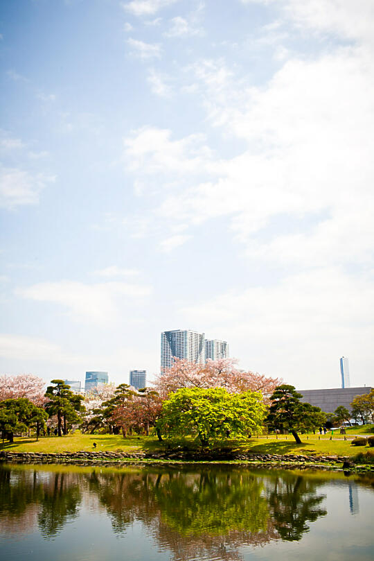 Hamarikyu Gardens