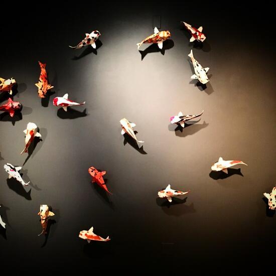Origami koi
