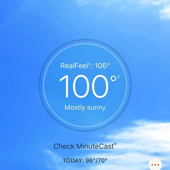 100 degrees!